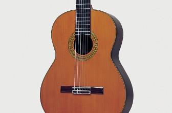 Guitare classique Juan Hernandez Profesor